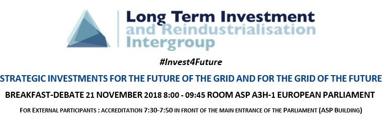 Long Term Investment Intergroup Strategic Investments for the Future of the Grid and for the Grid of the Future2